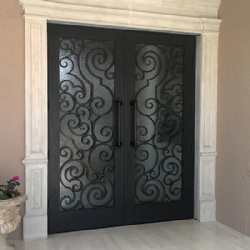 Modern Decorative Wrought Iron Security Doors