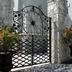 Antique Old Wrought Iron Gates